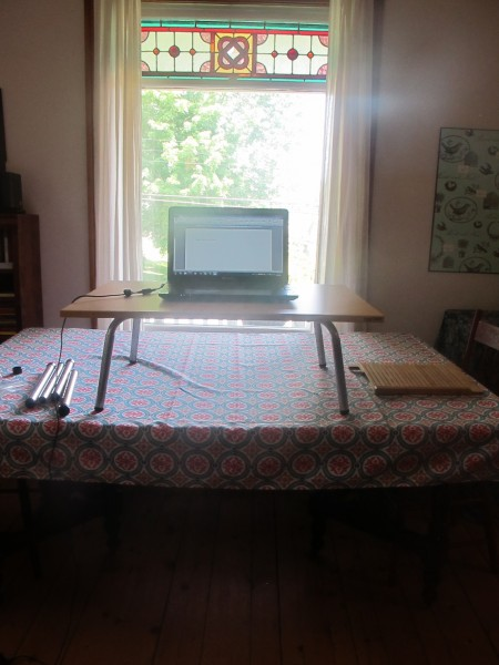 stand-steady-on-dining-room-table